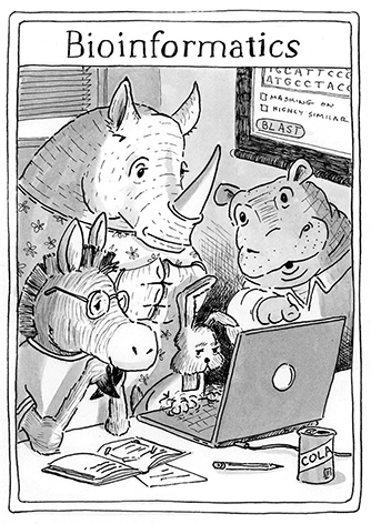 Black and white drawing of a hippo, a rhinoceros, a zebra and a rabbit gathered around a computer screen, studying bioinformatics.